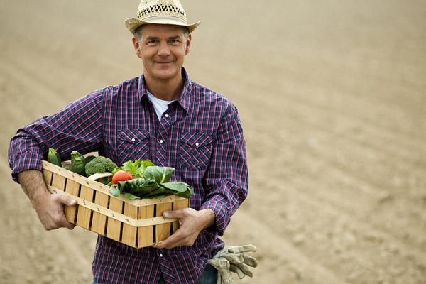 Как оформить фермерский кредит?