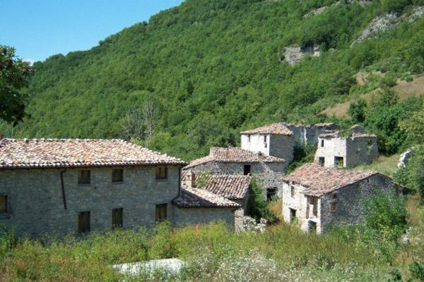 Инвестиции в недвижимость: как купить деревню