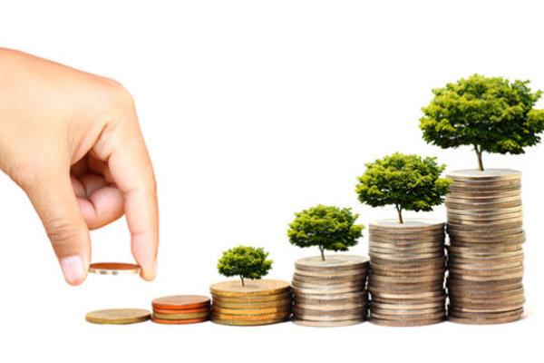 Как правильно инвестировать деньги: советы новичкам