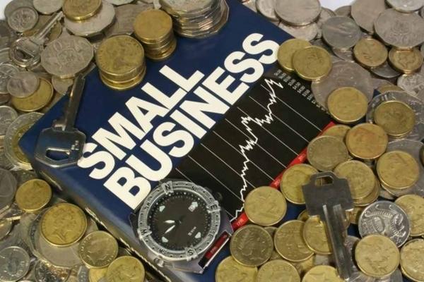 Кредит на развитие бизнеса без залога: виды и особенности получения.