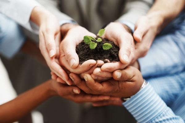 Кредит на развитие бизнеса: особенности оформления займа