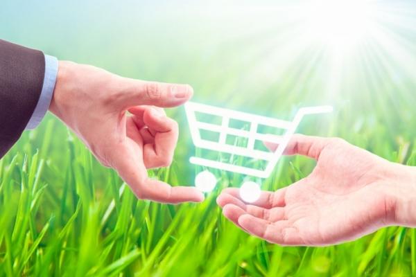 Что лучше, оформление кредита на товар или его покупка в рассрочку?