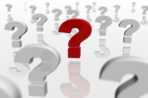 Деловые переговоры: как построить беседу с участниками?