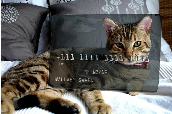 Насколько индивидуальным может быть дизайн кредитной карты?