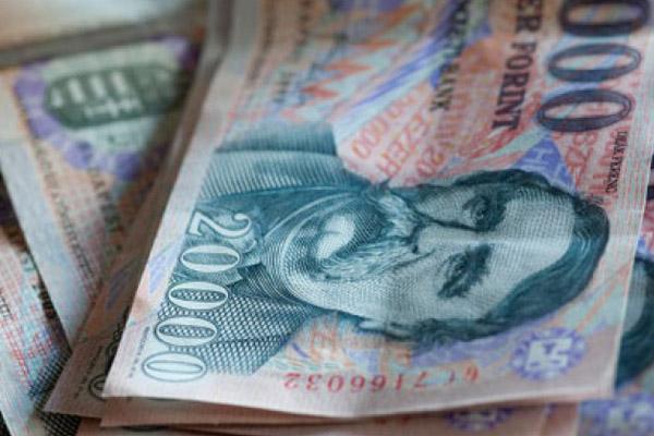 Валютная ипотека из Венгрии будет изгнана?