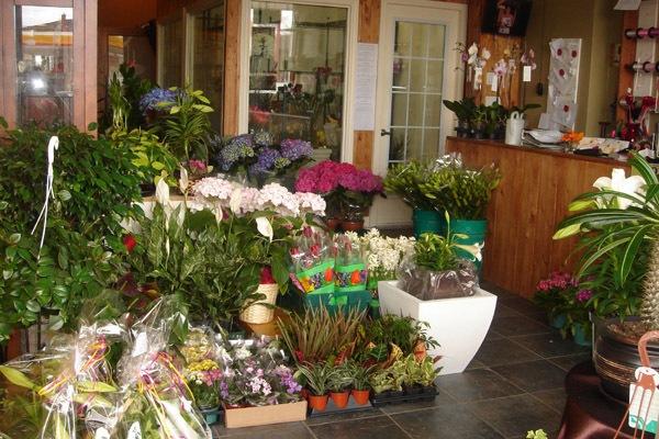 Цветочный бизнес – несколько советов начинающим
