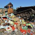 В России за год уничтожили 7 тысяч тонн санкционной еды