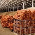 ЦБ предложил НПФ и страховщикам инвестировать в овощехранилища