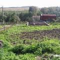 Собянин пообещал сохранить садовые участки на новых землях Москвы