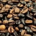 «Справедливая торговля» стимулирует производителей кофе
