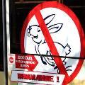 На «зайцев» будут жаловаться их работодателям