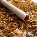 В России ужесточили требования к табачной продукции